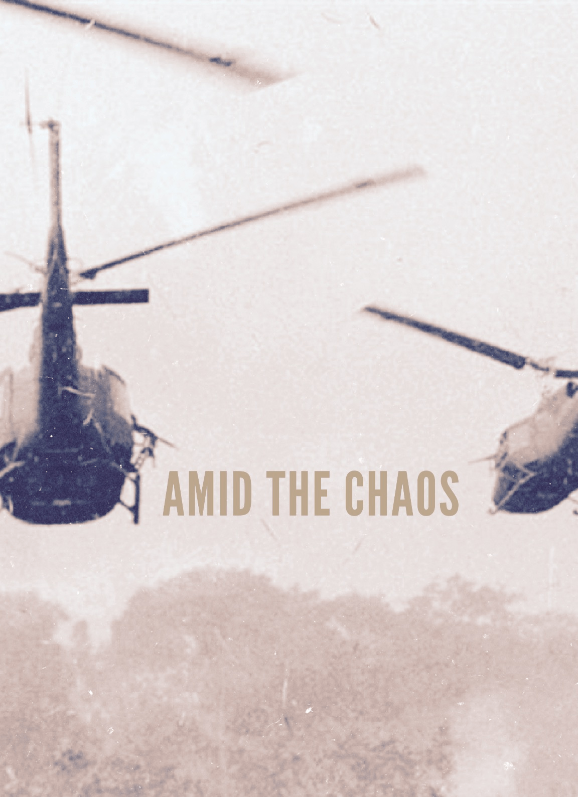 Amid the Chaos