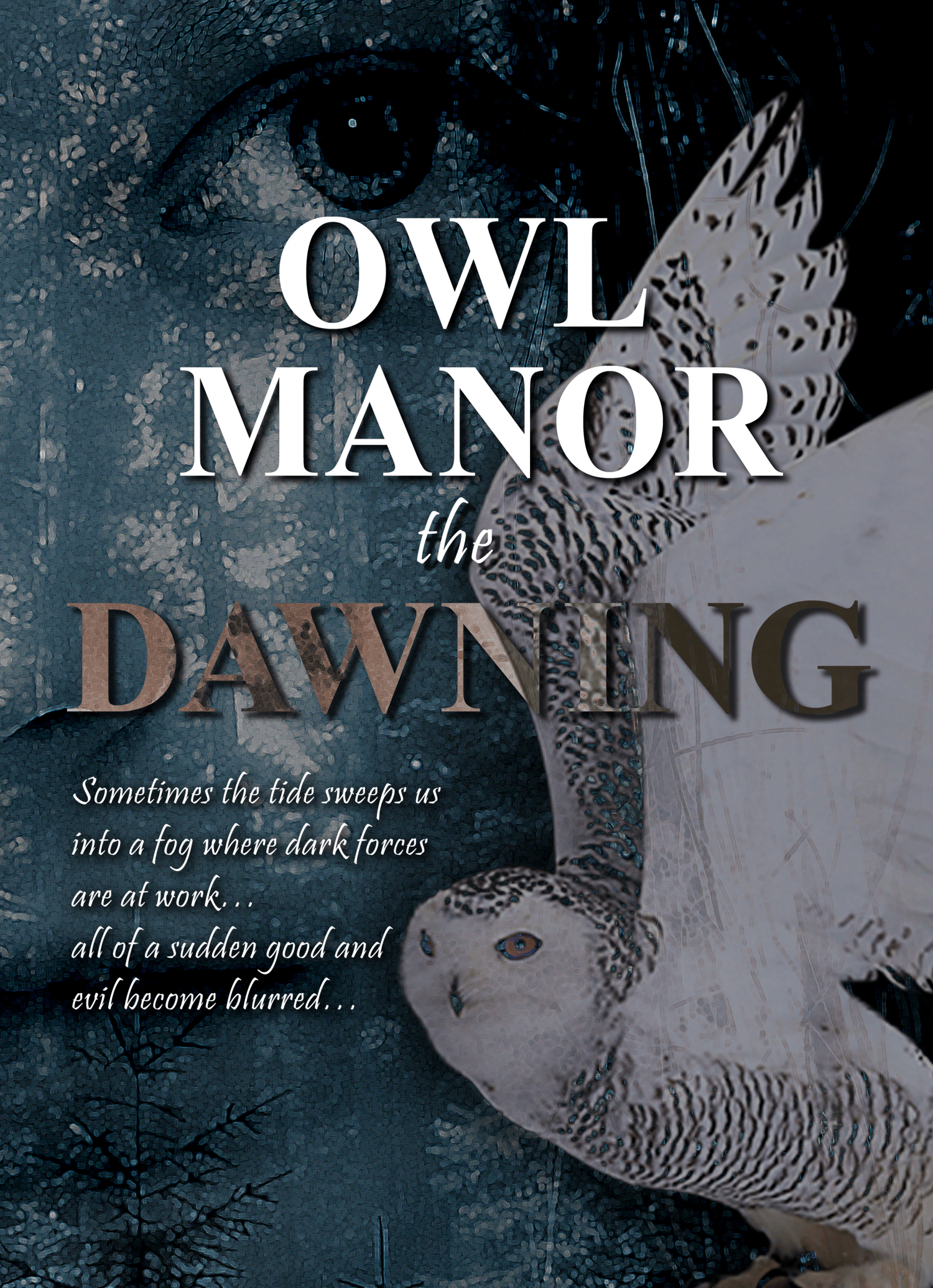 Owl Manor - the Dawning